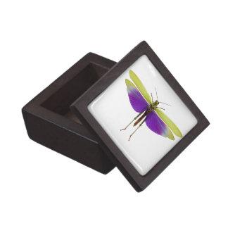 Grasshopper Caelifères Locust Titanacris Albipes Premium Trinket Box