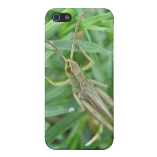 Grasshopper  cover for iPhone SE/5/5s