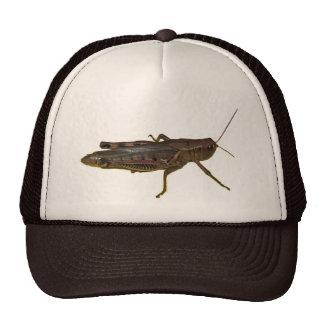 Grasshopper Design Trucker Hat