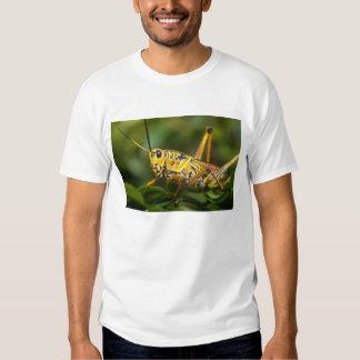 Grasshopper, Everglades National Park, Florida, Tshirt