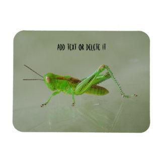 Grasshopper flex magnet