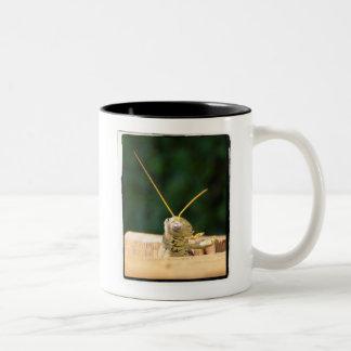 Grasshopper Hello Two-Tone Coffee Mug