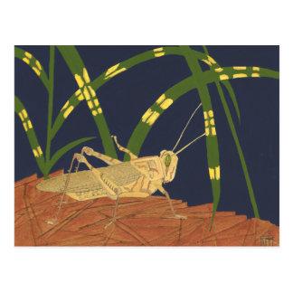 Grasshopper in Green Grass on Blue Background Postcard
