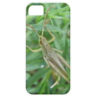 Grasshopper iPhone 5 Case