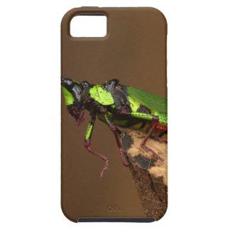 Grasshopper iPhone SE/5/5s Case