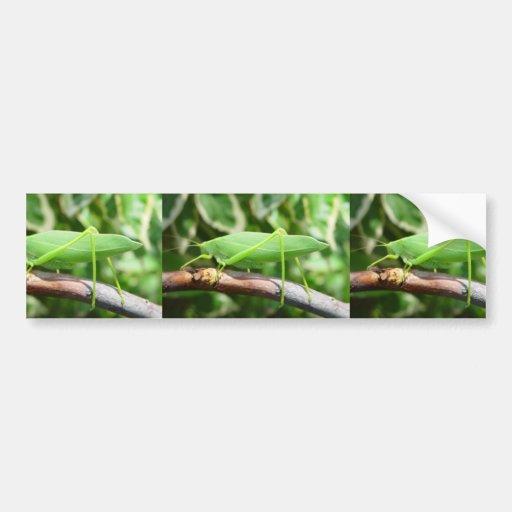 Grasshopper Like A Leaf Car Bumper Sticker