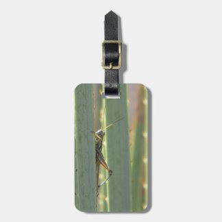 Grasshopper Travel Bag Tag
