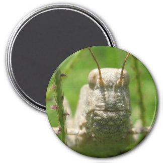 Grasshopper Macro Magnet