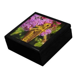 Grasshopper on Ageratum Jewelry Box