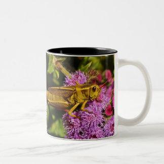 Grasshopper on Ageratum Two-Tone Coffee Mug