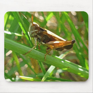 Grasshopper on Blade of Grass Mouse Pad