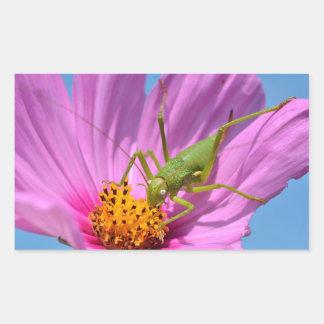 Grasshopper on cosmos flower rectangular sticker