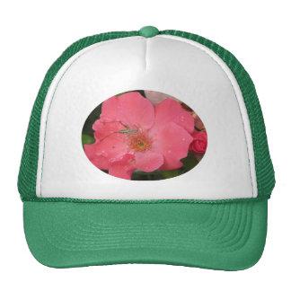 Grasshopper on Pink Rose Trucker Hat