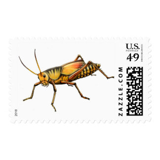 Grasshopper Postage