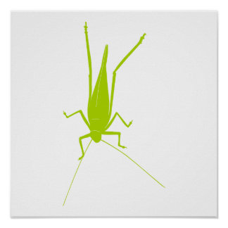 Grasshopper Print