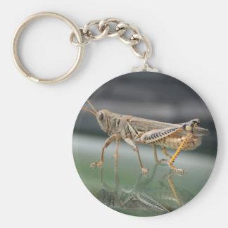Grasshopper Reflection Keychain