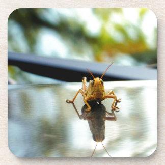 grasshopper stand off beverage coaster