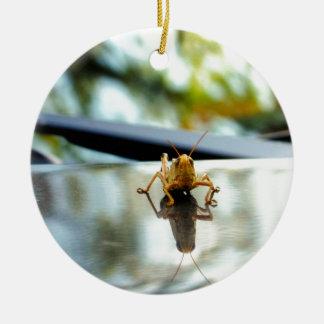 grasshopper stand off christmas ornament