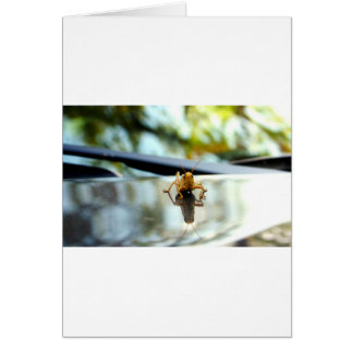 grasshopper stand off greeting card