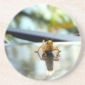 grasshopper stand off sandstone coaster