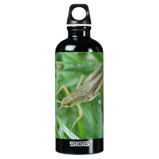 Grasshopper Water Bottle