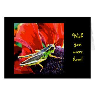 Grasshopper Wish You Were Here Card