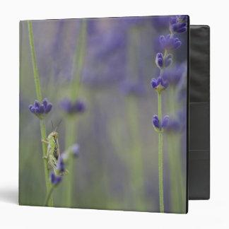 Grasshopper with lavender 3 ring binder
