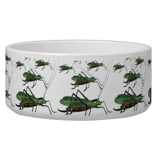 Grasshoppers / Katydids on the Move Antique Image Bowl