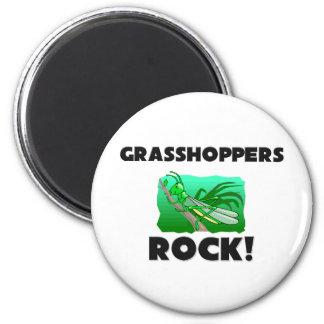 Grasshoppers Rock 2 Inch Round Magnet