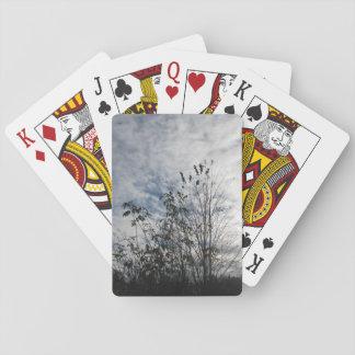 Grassland Poker Deck