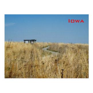 Grassland Postcard