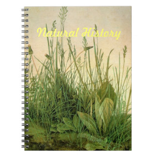 Grasslands Notebook
