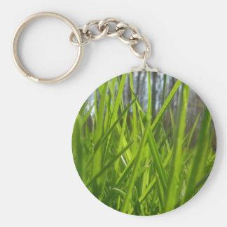 Grassy Basic Round Button Keychain