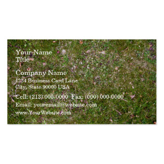 Grassy ground texture business cards
