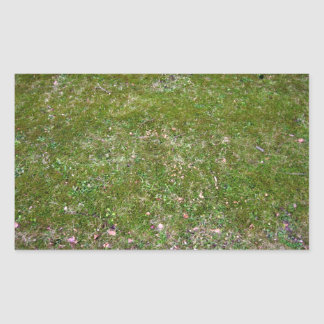 Grassy ground texture rectangular sticker