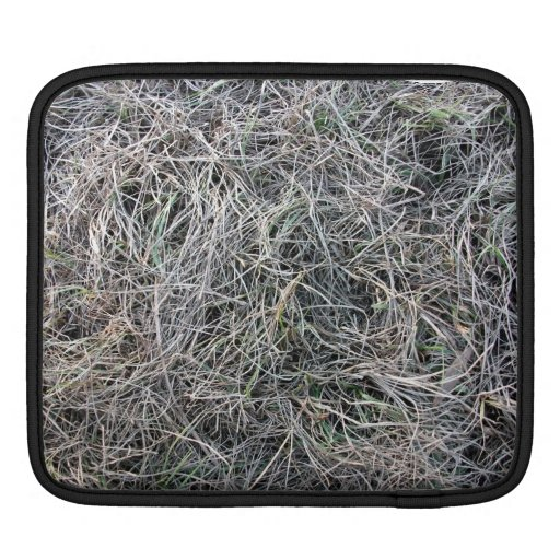 Grassy Ground With Mostly Dead Grass iPad Sleeve