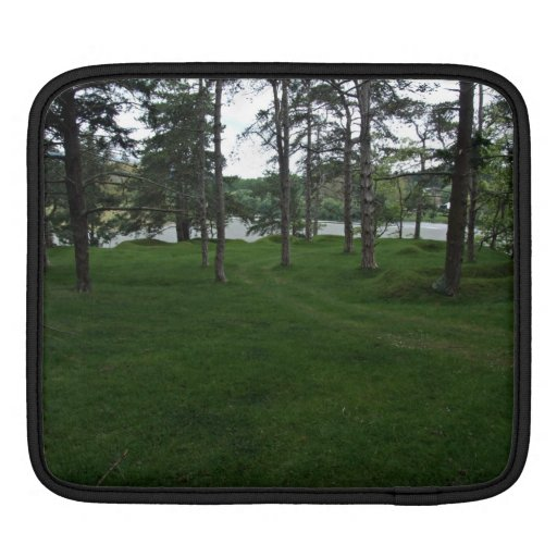 Grassy ground with trees and water sleeves for iPads