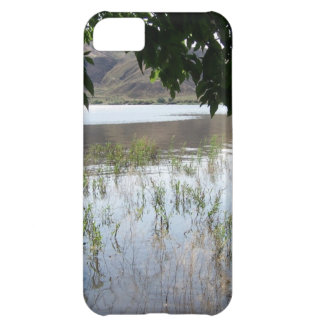 Grassy Lake with Tree Branch iPhone 5C Covers