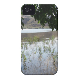 Grassy Lake with Tree Branch Case-Mate iPhone 4 Case