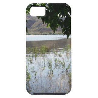 Grassy Lake with Tree Branch iPhone 5 Cases