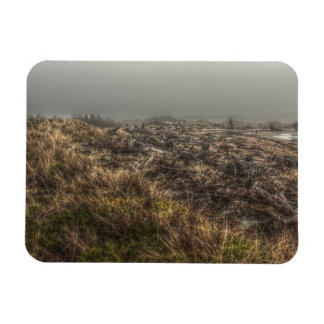 Grassy Meadow Foggy Beach Rectangular Magnet