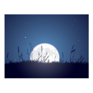 Grassy Moonrise Post Card