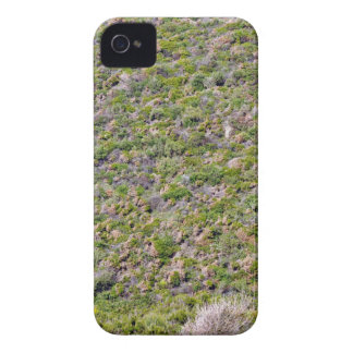 Grassy Mountain landscape iPhone 4 Cases