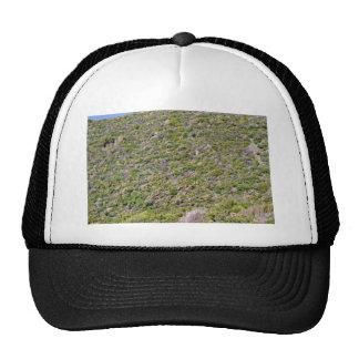 Grassy Mountain landscape Hats