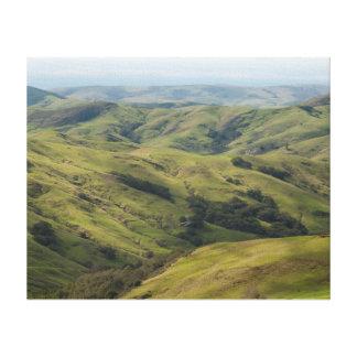 Grassy Pastures above Pacific, Cambria California Canvas Print