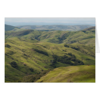 Grassy Pastures above Pacific, Cambria California Greeting Cards