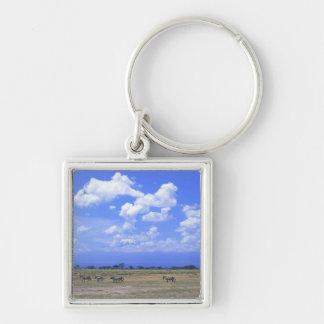 Grassy Plain Silver-Colored Square Keychain