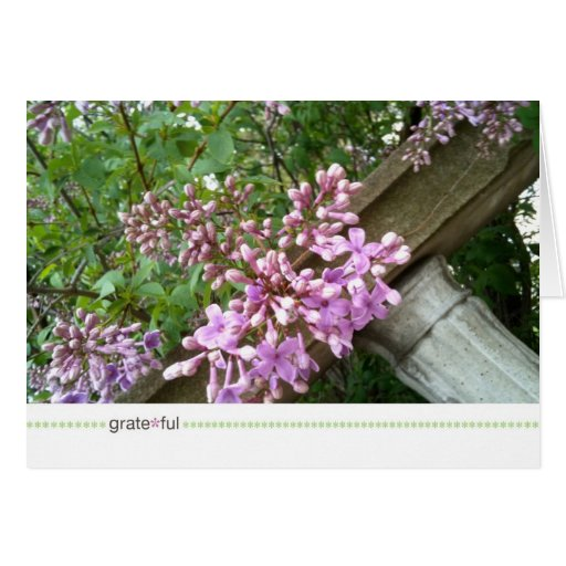 grate*ful_spring foundation greeting card