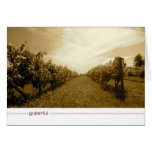 grate*ful_time before wine greeting card