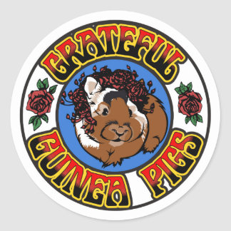 Grateful Guinea Pig Round Sticker